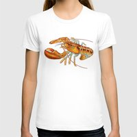 maine T-shirts featuring Maine Lobster by Tim Jeffs Art