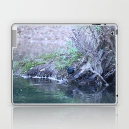 Black Bird At Water's Edge Laptop & iPad Skin
