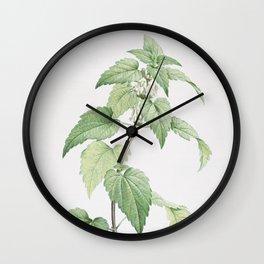 Vintage White Dead Nettle Plant Illustration Wall Clock