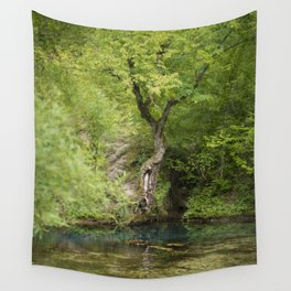 River spring in the forest Wall Tapestry