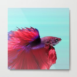 Red Beta Metal Print