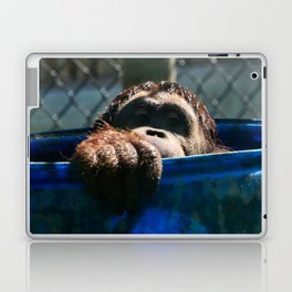 Peek-A-Boo Ape Laptop & iPad Skin