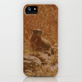 King of the Rock iPhone Case
