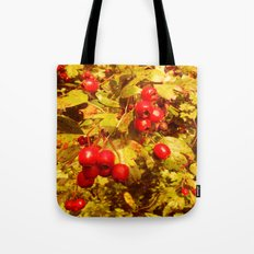 The Coming of Winter. Tote Bag