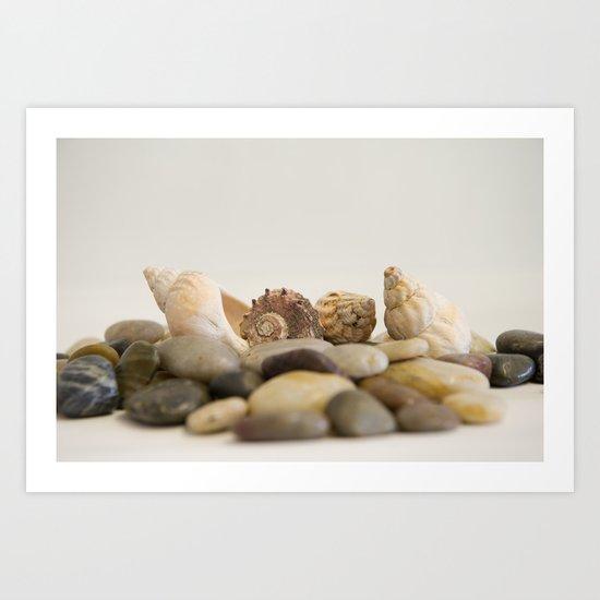 Seashells & Stones #1 #decor #art #society6 Art Print