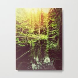 Mirror Pond Metal Print