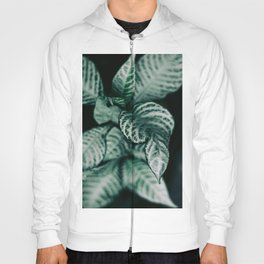 Different Hoody