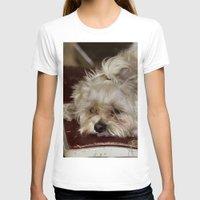 teddy bear T-shirts featuring Teddy Bear by IowaShots