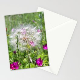 Poof Stationery Cards
