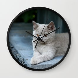 Bikkel the cat ! Wall Clock
