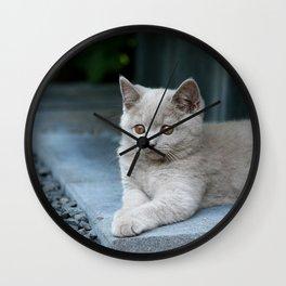 Bikkel the cat ! Wall Clock