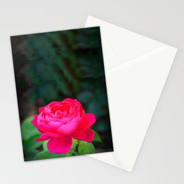 Dark Pink Rose by Teresa Thompson Stationery Cards