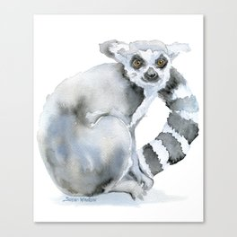 Ring-tailed Lemur Watercolor Canvas Print