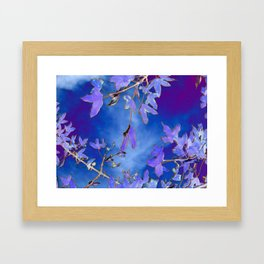 Into the Blue Framed Art Print