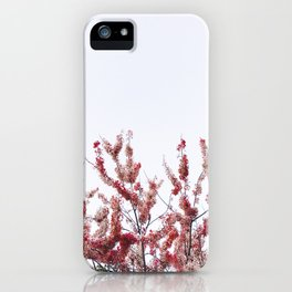 Found love under a Cherry Blossom tree iPhone Case