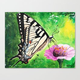Butterfly - Morning light - by LiliFlore Canvas Print