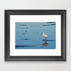 Egret walk Framed Art Print