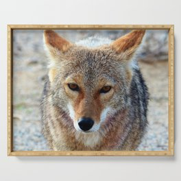Coyote Serving Tray