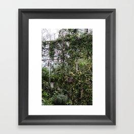 Royal Botanic Gardens Framed Art Print