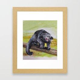 Bearcat Framed Art Print