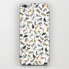 Nature Cats iPhone & iPod Skin