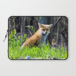 I Am the Fox. Who Are You? Laptop Sleeve
