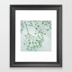 Little Beauties; Framed Art Print