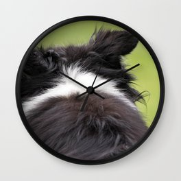 Rudy ~ Border Collie Wall Clock