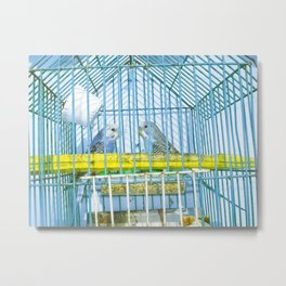 THE CANARIES Metal Print