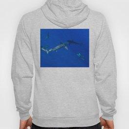 Hawaiian Shark V Hoody