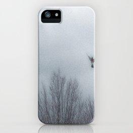 """Lori's First Robin"" iPhone Case"