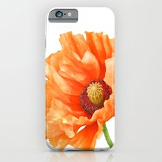 Perfect Poppy Slim Case iPhone 6