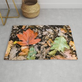 Autumnal leaves on the ground Rug