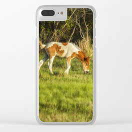 Following Mom - Chincoteague Pinto Foal No. 3 Clear iPhone Case