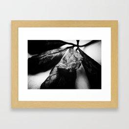 Wane Framed Art Print