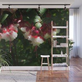 Gorgeous Fuchsias Wall Mural