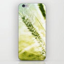 Splendor iPhone Skin
