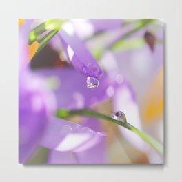 Natural raindrops slide / Natürliche Regentropfen Rutsche Metal Print