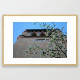 Beneath the Campanile Framed Art Print