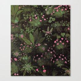El Trifolium del fraile Canvas Print