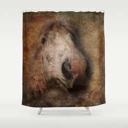 Vintage portrait of the horse Shower Curtain