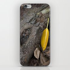lone yellow leaf  iPhone & iPod Skin