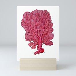 Venus red sea fan coral Mini Art Print