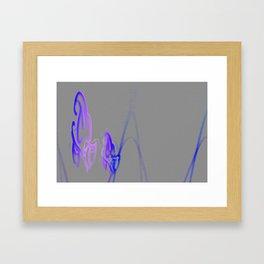 Luminescence Framed Art Print