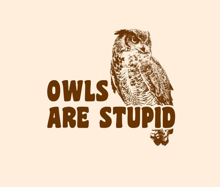Owls Are Stupid Metal Travel Mug