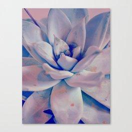 #184 Canvas Print