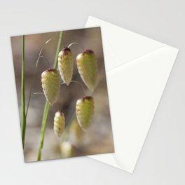 Briza Grass Stationery Cards