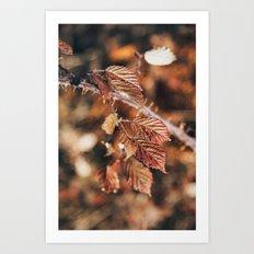 Breathing nature (II) Art Print