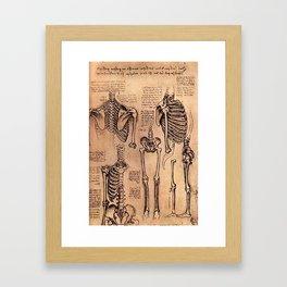 Study of Skeletons - Leonardo da Vinci Framed Art Print