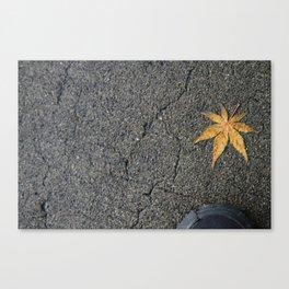 Lone Leaf Canvas Print